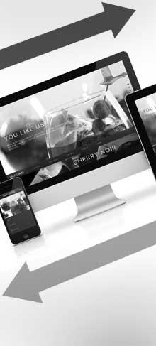 Responsive Website Design WordPress Themes Plugins CMS Admin SEO