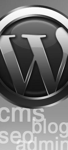 WordPress Themes Plugins CMS Admin SEO